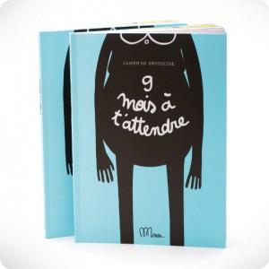 Pregnancy notebook