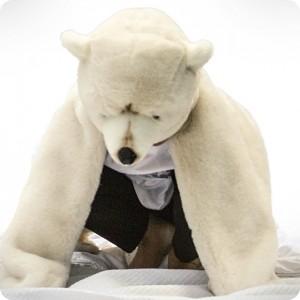 Déguisement ours polaire
