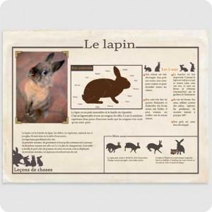 Affiche Le Lapin