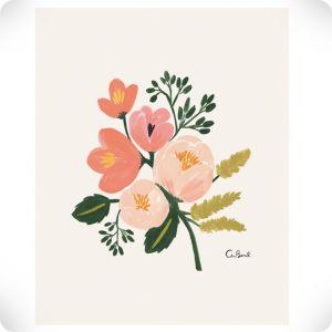 Affiche Rose Botanical